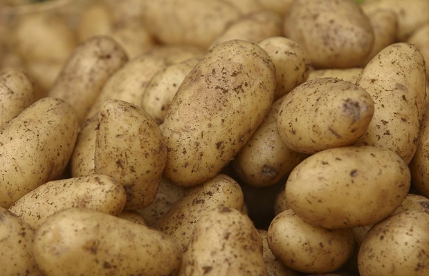 Potato may be the State Vegetable