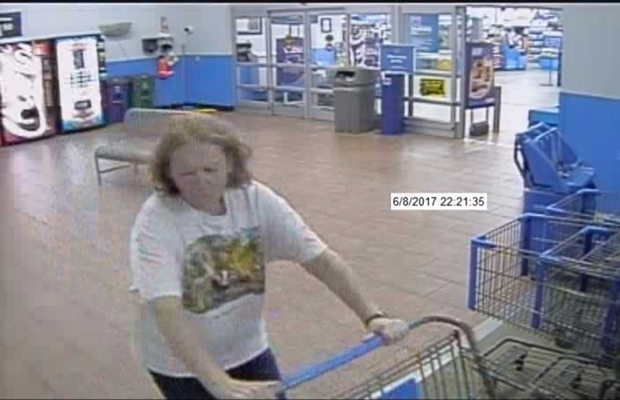 Woman abandons cat at derry walmart 96 5 the mill for Craft stores manchester nh